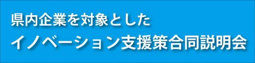 イノベーション支援策説明会head.jpg