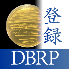 DBRP_image.png